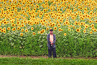 Dean and the Sunflowers at Colby Farm in Newbury MA.