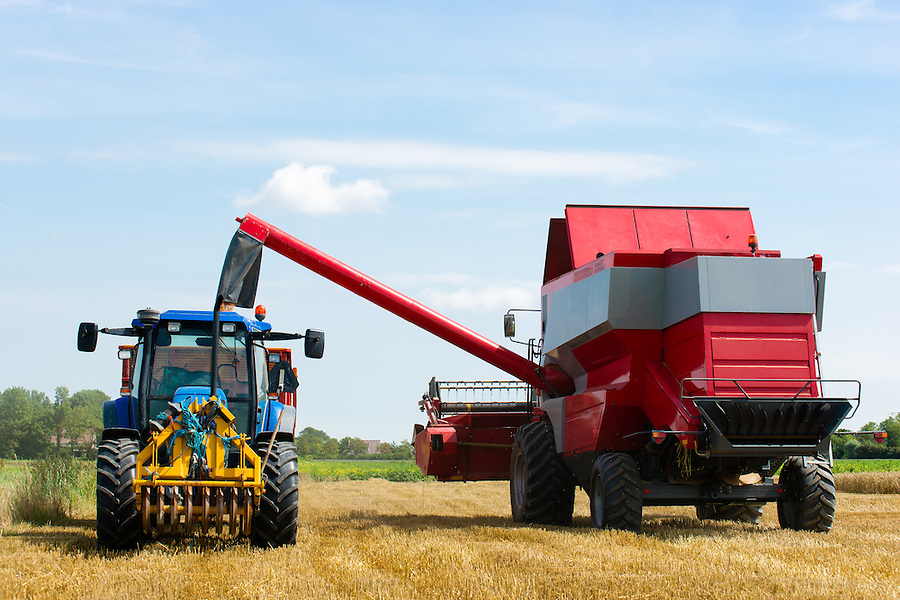 A combine/tractor is harvesting the wheat on a sunny day