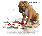 Marcello, REALISTIC ANIMALS, REALISTISCHE TIERE, ANIMALES REALISTICOS, paintings+++++,ITMCEDC1094CINT,#A# ,dogs,puppies