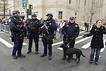 March 16, 2013 - New York, NY, U.S. - The City of New York Police, including Canine team dog, have an important role in security during the 252nd annual NYC St. Patrick's Day Parade. Thousands of marchers show their Irish pride, as they march up Fifth Avenue, and over a million people watch and celebrate.