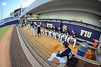 FIU Baseball 2012 (Combined)