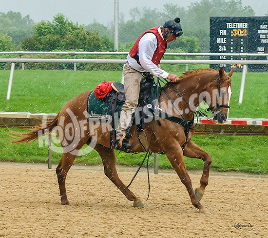Outriders at Delaware Park on 6/8/16