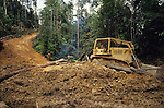 Bulldozer Logging Deforestation