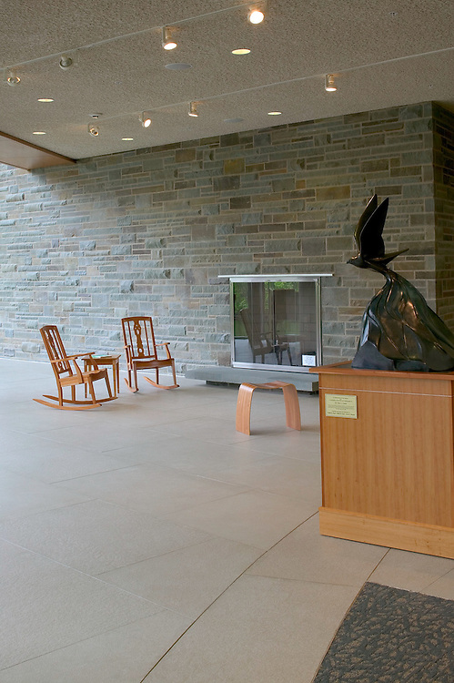 Cornell University Lab of Ornithology | Hillier