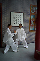 Martial artists practise Tai Chi at the Traditional Chinese Medicine Centre in the Xianhu resort of Nanhai district in Foshan city, Guangdong province, November 9, 2011.