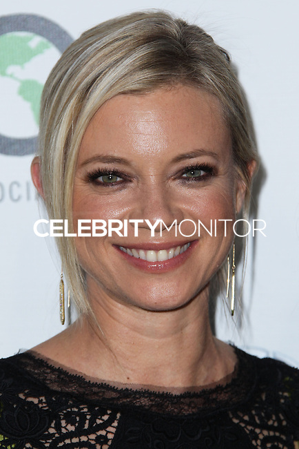 BURBANK, CA - OCTOBER 19: Amy Smart at the 23rd Annual Environmental Media Awards held at Warner Bros. Studios on October 19, 2013 in Burbank, California. (Photo by Xavier Collin/Celebrity Monitor)