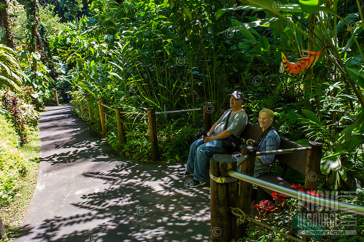Tourists rest on a bench at Hawaii Tropical Botanical Garden, Papa'ikou, Big Island of Hawaiʻi.