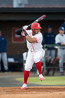 Nick Beinlich (15) of the Belmont Abbey Crusaders at bat against the Catawba Indians at Abbey Yard on February 7, 2017 in Belmont, North Carolina.  The Crusaders defeated the Indians 12-9.  (Brian Westerholt/Four Seam Images)