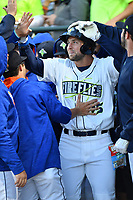 Left fielder Tim Tebow (15) of the Columbia Fireflies is congratulated after his first Class A home run a game against the Augusta GreenJackets on Opening Day, Thursday, April 6, 2017, at Spirit Communications Park in Columbia, South Carolina. Columbia won, 14-7. (Tom Priddy/Four Seam Images)