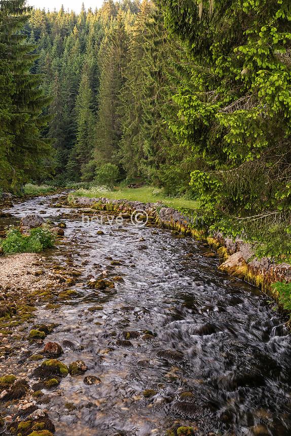 France, Doubs (25), Mouthe, le Doubs proche de sa source // France, Doubs, Mouthe, the Doubs river close to it's source