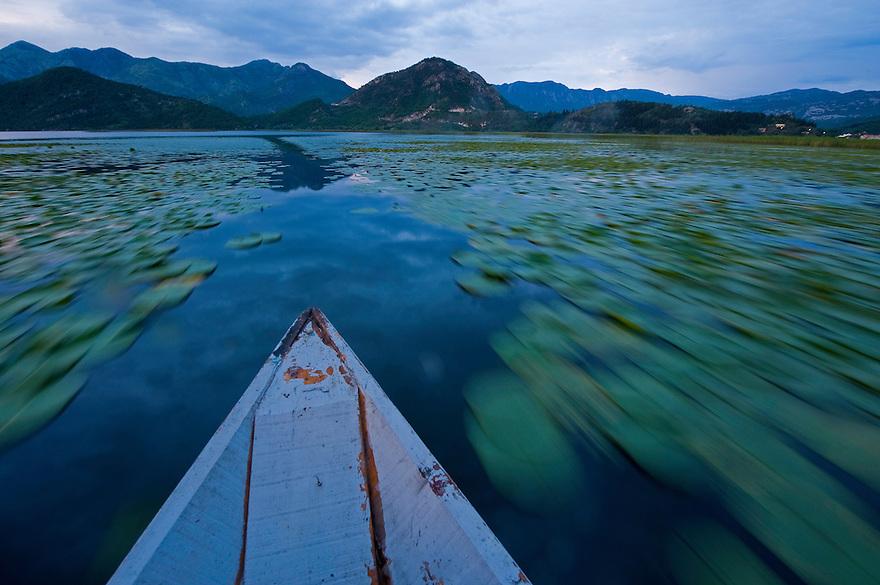 Boat path near Virpazar, Lake Skadar National Park, Montenegro