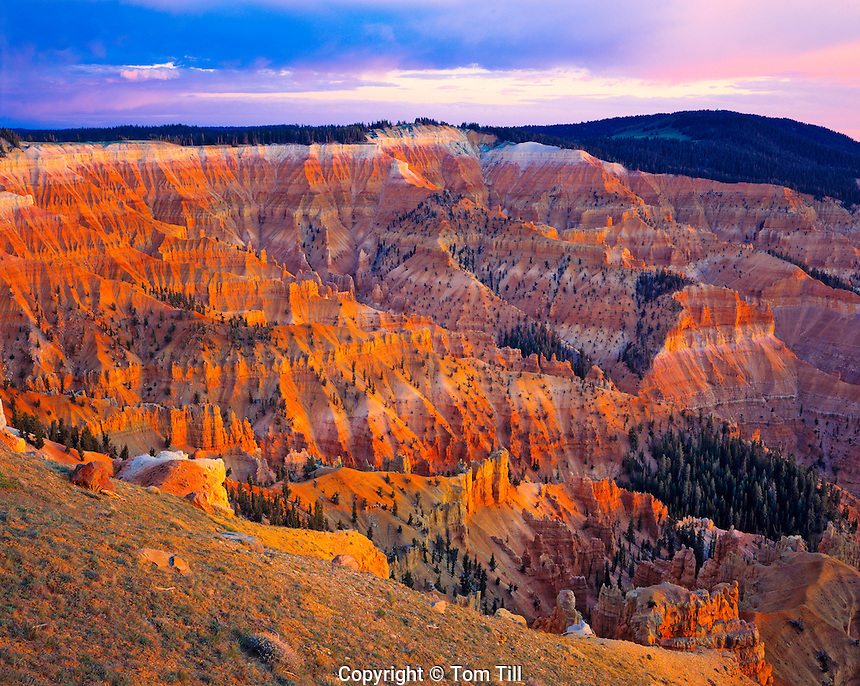 Cedar Breaks in Evening Light, Cedar Breaks National Monument, Utah