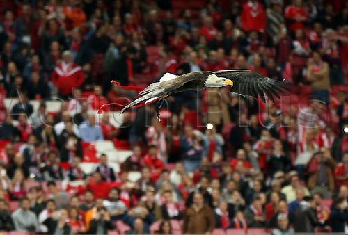 03.11.2015. Lisbon, Portugal.  UEFA Champions League Group C football match between Benfica and Galatasaray at Estadio da Luz Stadium in Lisbon, Portugal. Benfica mascot, the Eagle