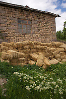 A rural scene in Bünyan, Kayseri, Turkey with farmhouse, hay and wildflowers