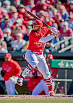 29 February 2020: St. Louis Cardinals catcher Jose Godoy in action during a Spring Training game against the Washington Nationals at Roger Dean Stadium in Jupiter, Florida. The Cardinals defeated the Nationals 6-3 in Grapefruit League play. Mandatory Credit: Ed Wolfstein Photo *** RAW (NEF) Image File Available ***