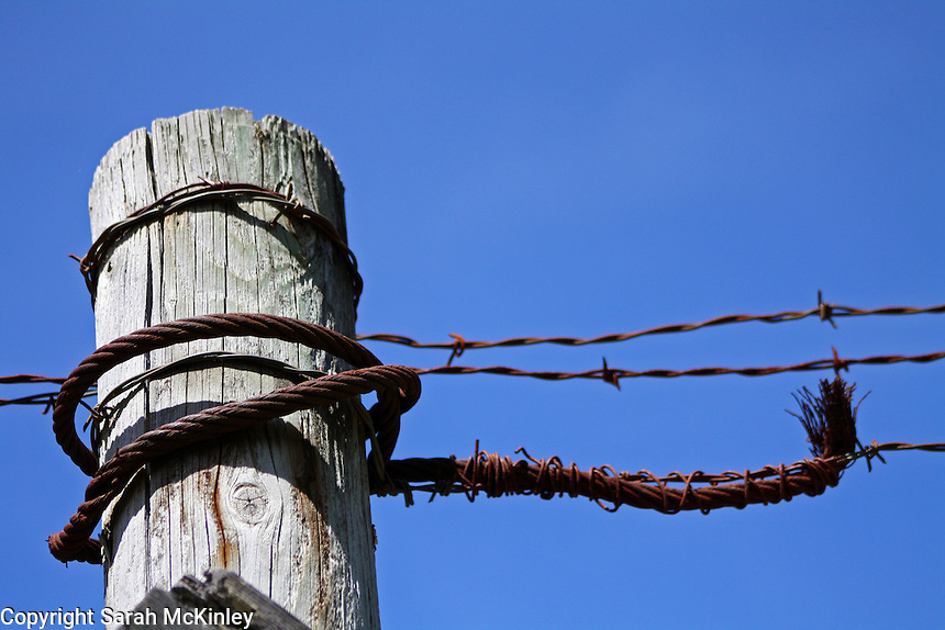 Rusted cable and barbed wire wrap around the gray, weathered wood of an old fencepost with a backdrop of blue sky along Muir Mill Road in Willits in Mendocino County in Northern California.