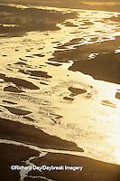 00882-03006 Sandhill Cranes (Grus candensis) aerial above Platte River near Kearney   NE
