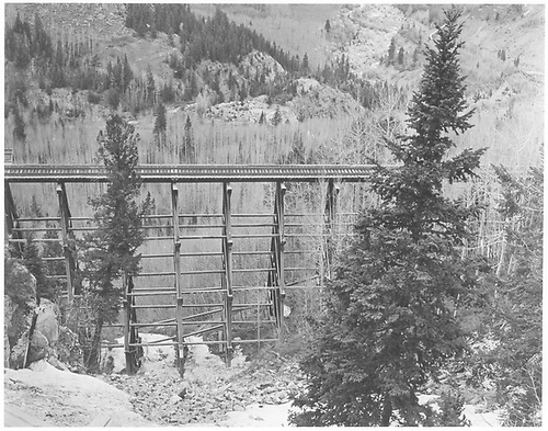 A side view of RGS Bridge 46-D.<br /> RGS  Ophir Loop, CO  Taken by Chione, A. G. - 1949