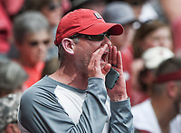 NWA Democrat-Gazette/CHARLIE KAIJO An Arkansas Razorbacks fan reacts during game two of the College Baseball Super Regional, Sunday, June 9, 2019 at Baum-Walker Stadium in Fayetteville. Ole Miss forces a game three with a 13-5 win over the Razorbacks