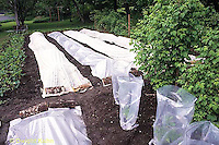 HB07-023x  Garden row coverings - floating row covers - fabric and poly plastic