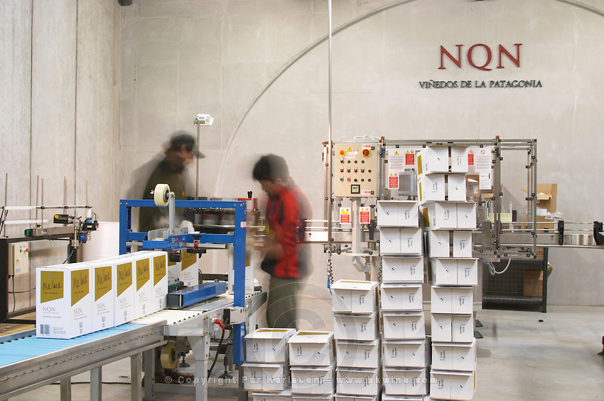The winery, the bottling line Bodega NQN Winery, Vinedos de la Patagonia, Neuquen, Patagonia, Argentina, South America