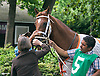 He'll Pay before The Stanton Stakes at Delaware Park on 6/22/16
