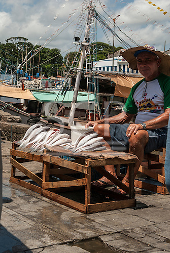 Belem, Para State, Brazil. Selling fish at Ver-o-Peso market harbour.