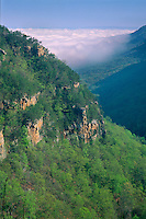 Cloudland Canyon<br />