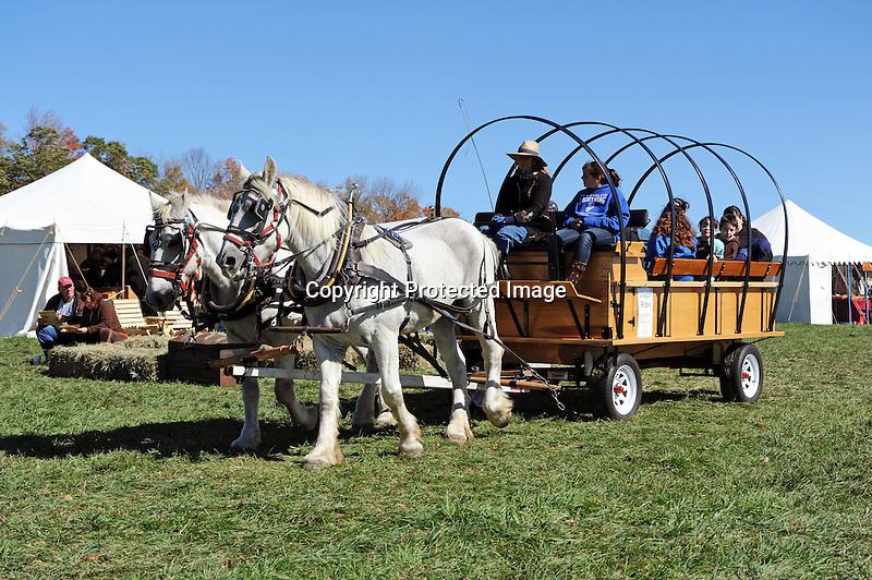 Civil War Reenactment Unity Village Camp Horse and Wagon