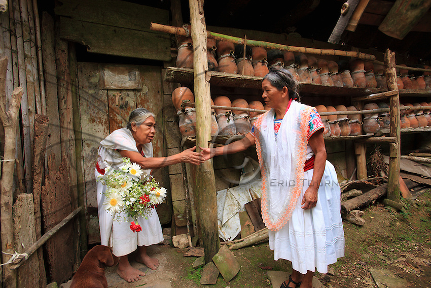 In Tepetisnda, a woman in tradition Nahuatl dress brings flowers to Maria Rosa.<br /> Kept by the women since time immemorial in earthen pots standing against the walls of the houses, the stingless trigona (trigona scaptotrigona) provides the perfect example of sedentary apiculture practiced for self-sufficiency.