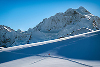 Ski touring between shadows in the Jungfrau Region, above Lauterbrunnen Valley, with views of the Jungfrau, Switzerland.