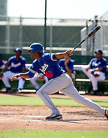 Alfredo Silverio / Los Angeles Dodgers 2008 Instructional League..Photo by:  Bill Mitchell/Four Seam Images