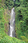 Trafalgar falls on the island of Dominica lies just a few miles into the hills from the town Roseau.