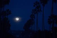 December 2, 2017 - San Diego, California, USA-  A super moon rises near at Windansea Beach in the La Jolla area of San Diego, California on Saturday, Dec. 2, 2017.   (Photo Credit: © K.C. ALFRED/ZUMA PRESS)