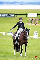 NZL-Lauren Alexander rides Classic Indigo during the CCI2* Dressage. 2016 NZL-Puhinui International 3 Day Event. Puhinui Reserve, Auckland. Friday 9 December. Copyright Photo: Libby Law Photography