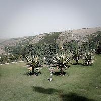 Belvedere dei giardini Iblei a Ragusa Ibla..Belvedere of the Iblei Gardens in Ragusa Ibla
