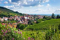 Deutschland, Rheinland-Pfalz, Suedliche Weinstrasse, Sankt Martin (Pfalz): Weindorf mit der gleichnamigen Dorfkirche St. Martin | Germany, Rhineland-Palatinate, Southern Wine Route, Sankt Martin (Pfalz): wine village with church St. Martin
