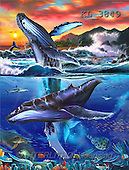 Interlitho, Lorenzo, REALISTIC ANIMALS, paintings, 2 whales(KL3849,#A#) realistische Tiere, realista, illustrations, pinturas ,puzzles