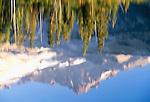 Reflection of Little Tahoma, Mt. Rainier National Park, Washington, USA