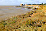 Martello tower W defended by rock armour from coastal erosion, East Lane, Bawdsey, Suffolk, England, UK