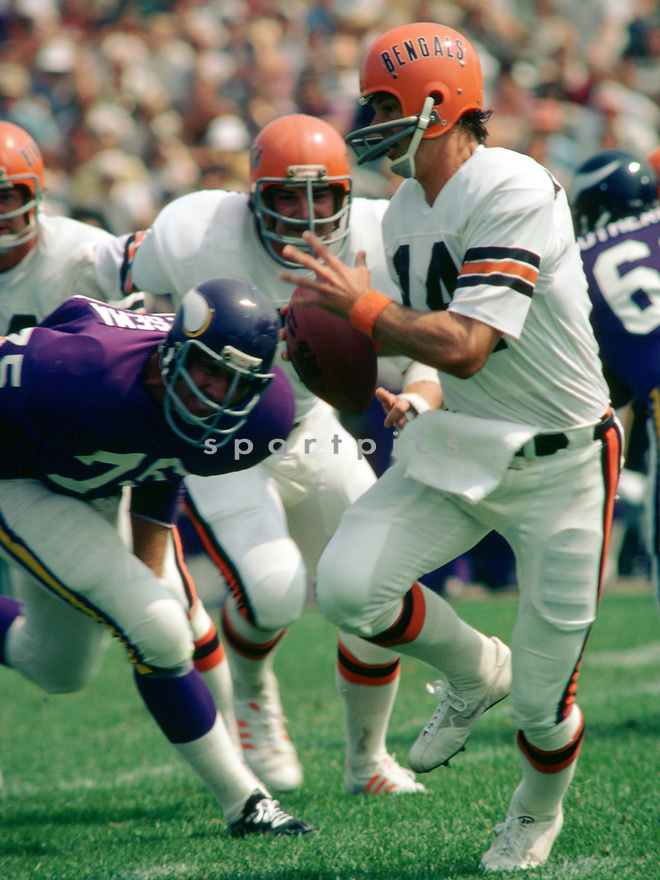 Cincinnati Bengals Ken Anderson (15) during a game from his 1978 season with the Cincinnati Bengals. Ken Anderson played for 16 years, all with the Cincinnati Bengals, was a 4-time Pro Bowler and the 1981 NFL MVP.<br /> (SportPics)