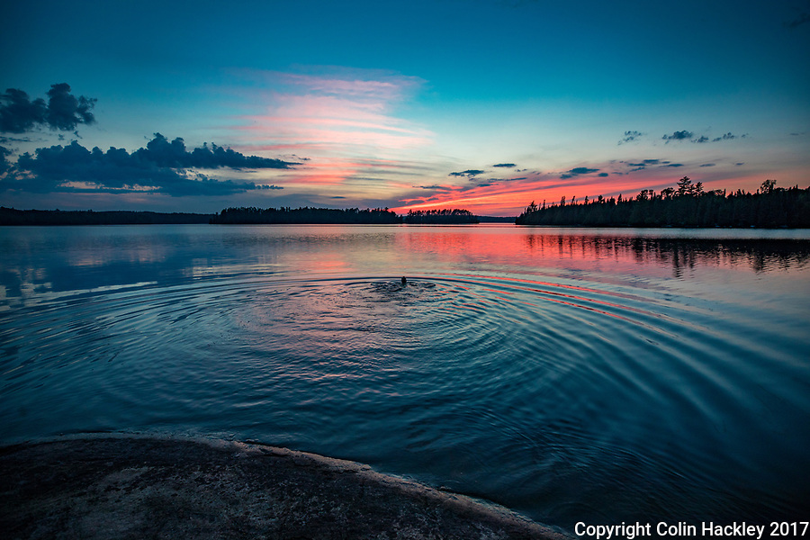 BWCA, MN, 7/29/17-A sunset swim on Sunday Bay of the Boundary Waters Canoe Area's Crooked Lake.<br /> <br /> <br /> COLIN HACKLEY PHOTO