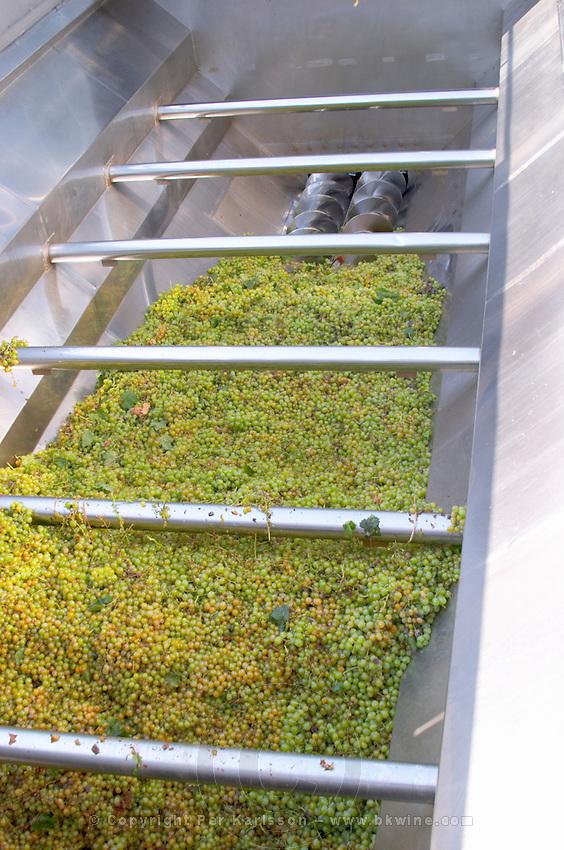 Grape reception hopper. Torres Penedes Catalonia Spain