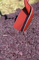 Press residue: grape skins and pips and a shovel. Chateau Sansonnet, Saint Emilion, Bordeaux, France