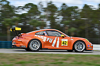 Porsche GT3 Cup Series<br /> Sebring February Test<br /> Sebring International Raceway, Sebring, Florida, USA<br /> Wednesday 21 February 2018<br /> #42 Topp Racing, Porsche 991 / 2014, GT3G: Bill Smith<br /> World Copyright: Richard Dole<br /> LAT Images