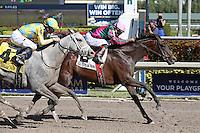 02-04-17 Gulfstream Park Stakes