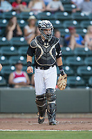 Winston-Salem Dash catcher Brett Austin (7) on defense against the Salem Red Sox at BB&T Ballpark on June 16, 2016 in Winston-Salem, North Carolina.  The Dash defeated the Red Sox 7-1.  (Brian Westerholt/Four Seam Images)