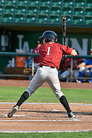 Luke Willis (1) of the Idaho Falls Chukars at bat against the Ogden Raptors in Pioneer League action at Lindquist Field on September 3, 2016 in Ogden, Utah. The Chukars defeated the Raptors 3-0. (Stephen Smith/Four Seam Images)