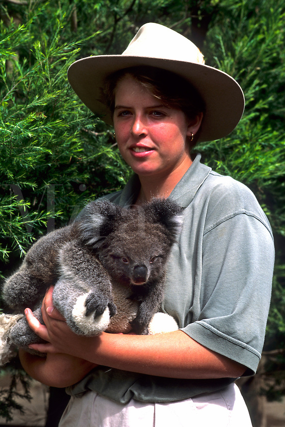 Tourist guide holding Koala bear at zoo in Australia.
