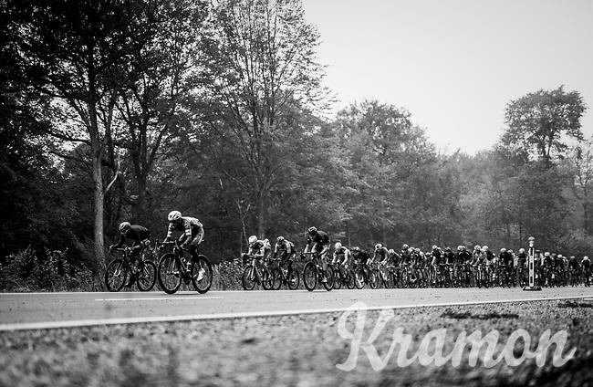 the peloton<br /> <br /> 2018 Binche - Chimay - Binche / Memorial Frank Vandenbroucke (1.1 Europe Tour)<br /> 1 Day Race: Binche to Binche (197km)